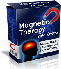 Magnetic Therapy For Idiots™
